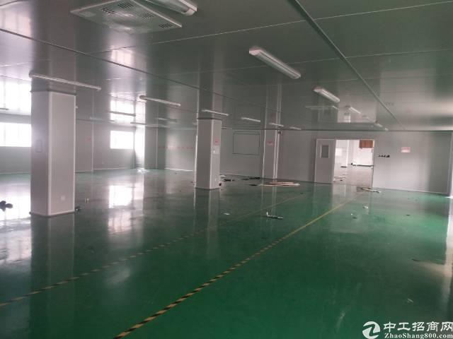 万江标准厂房独门独院4000平米租15