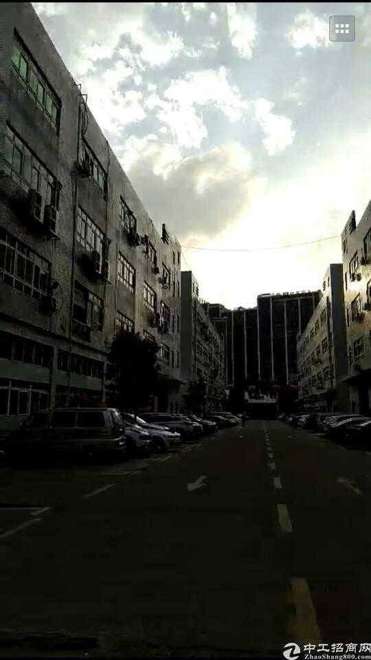 出售龙华独门独院红本厂房。适合投资自用。