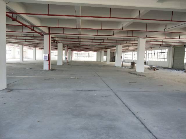 桥头镇新出全新独院标准厂房15000平米出租