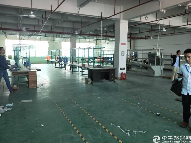 沙井大王山二工业区楼上一整层带精装修实际面积1000平方出租-图3
