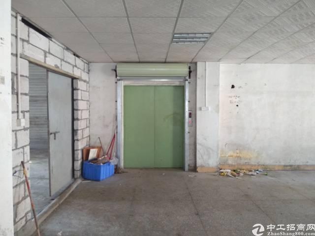 惠州新出精装标准厂房一楼800平米,现房-图5