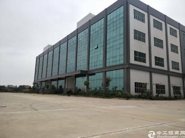广州白云机场65000平方电商仓储出租