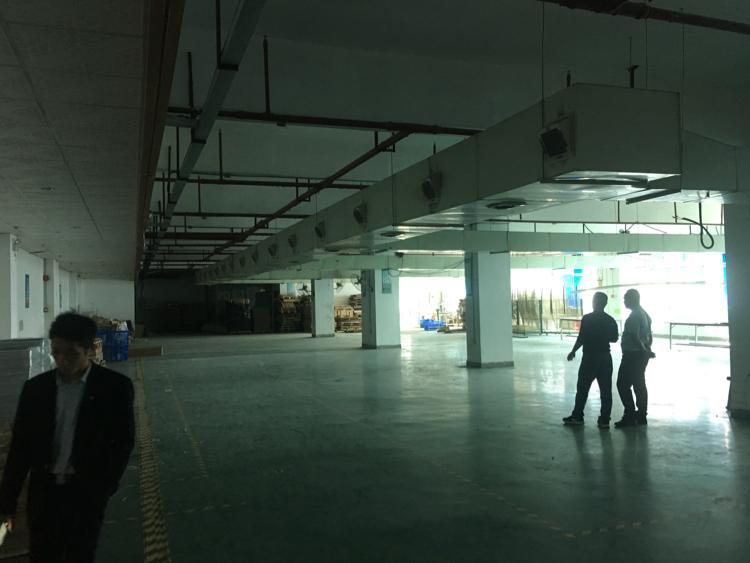 坑梓新出二楼带装修地坪漆1200平出租