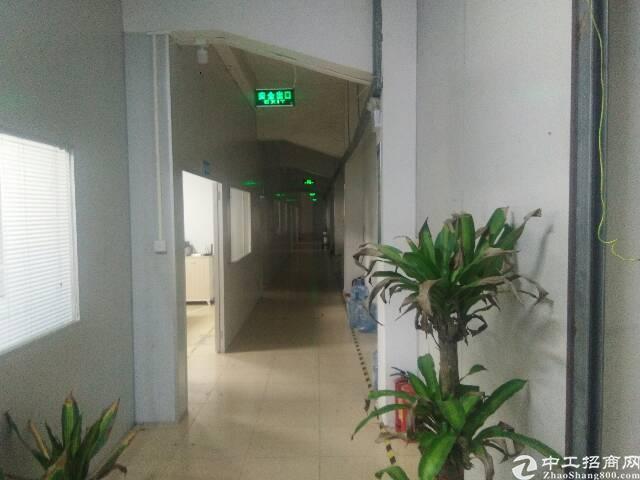 谢岗原东标准楼上厂房