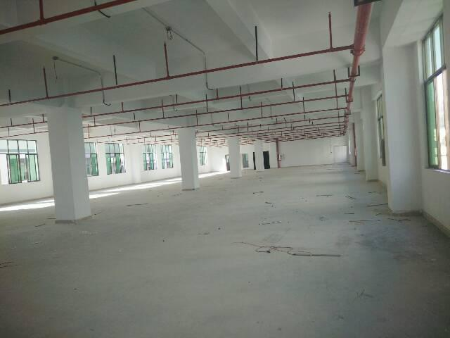 惠阳新圩长布2000平方厂房出租