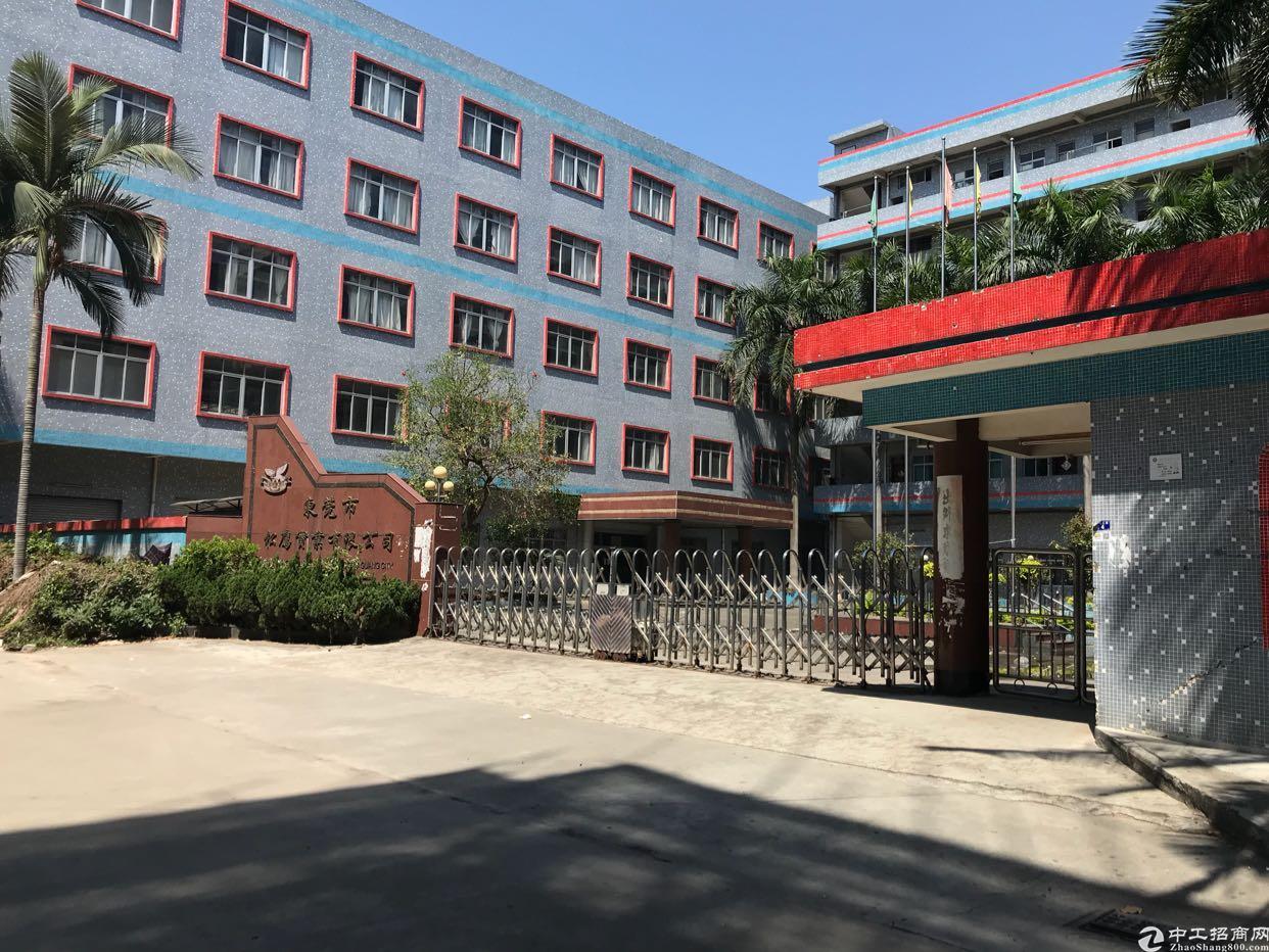 万江2016年新建标准花园式全新厂房