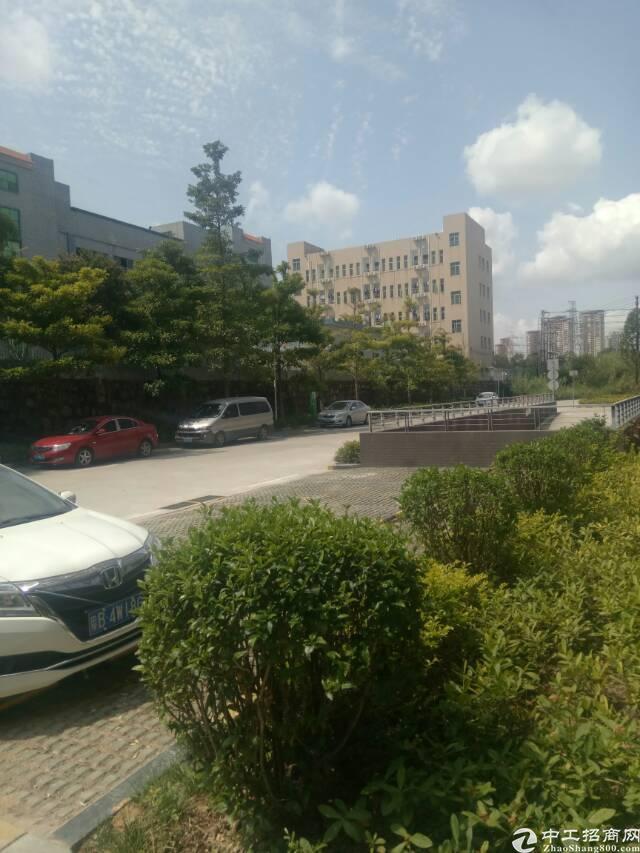 坪山新区新推出标准精装修厂房共约400平方招租