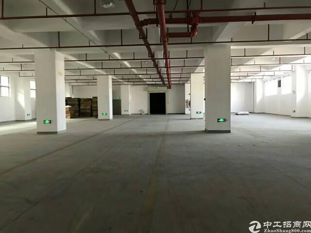 平湖华南城附近一二楼3000平方厂房出租