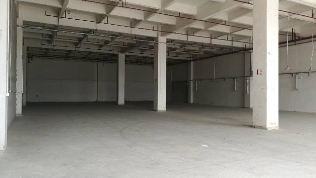 东莞市凤岗镇临深片区高6米5标准厂房
