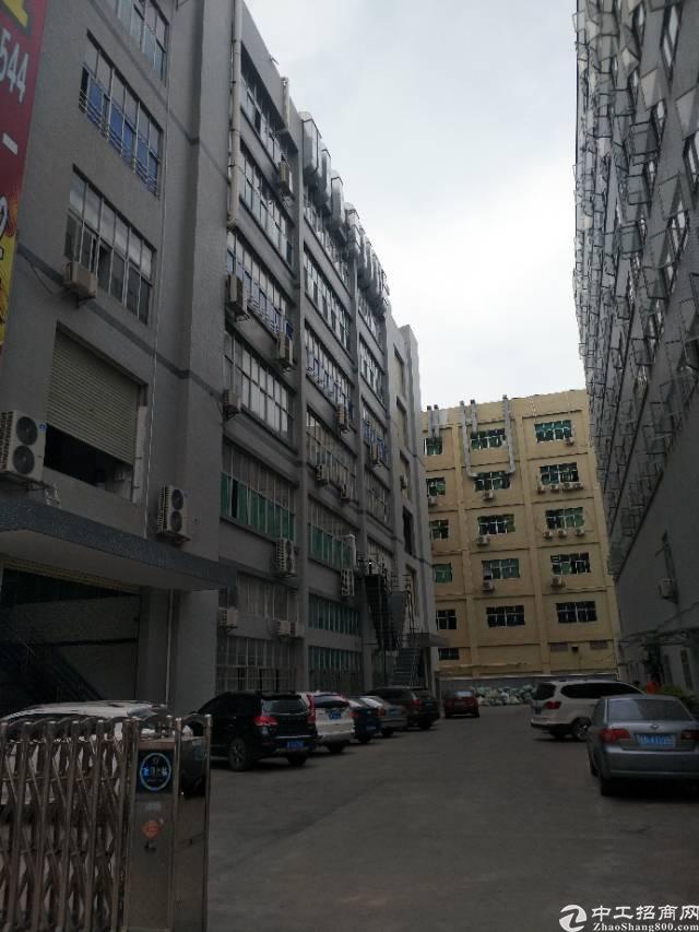 凤岗镇雁田楼上可做食品厂房2000平方
