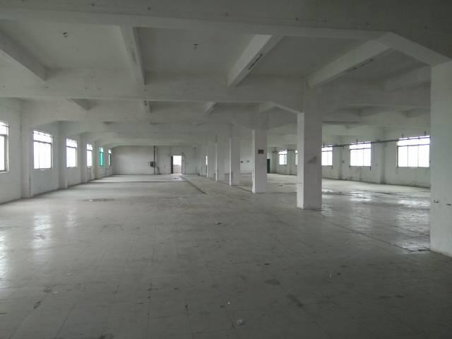 惠州新出精装独院标准厂房一栋1000平方,现房-图4