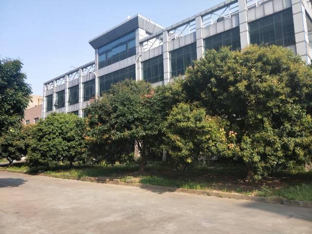 新塘花园式标准厂房 带豪华装修  可分租-图4