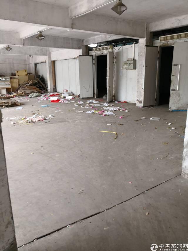 平湖平龙东路边一楼3600平方招租