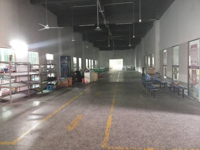 新塘花园式标准厂房 带豪华装修  可分租-图3