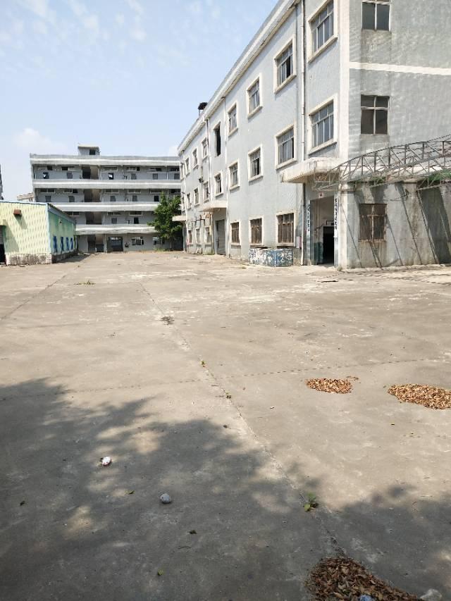 谢岗镇原房东标准厂房二楼整层1200平方10元出租