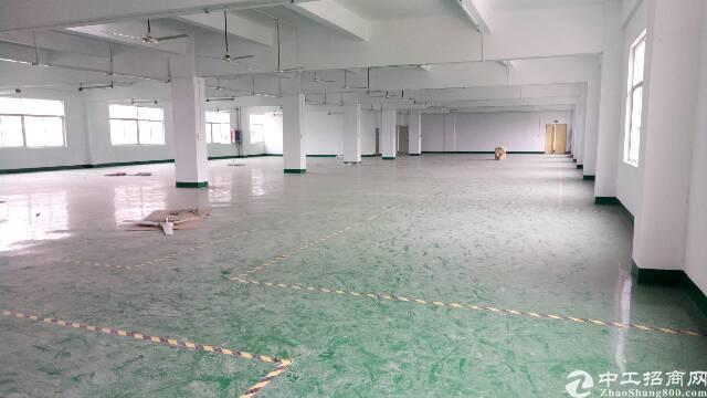 坑梓三楼厂房1450平方招租,带红本 地坪漆