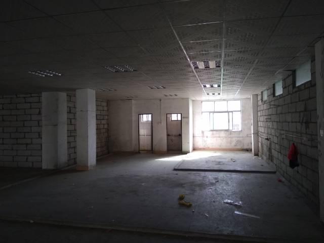 惠州新出精装标准厂房一楼800平米,现房