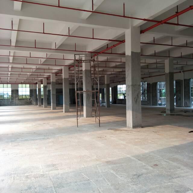 企石原房东分租标准厂房1-3F6000平方(含装修)
