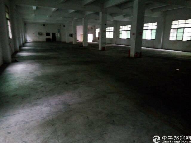 平湖大望工业区新出一楼1380平米厂房出租