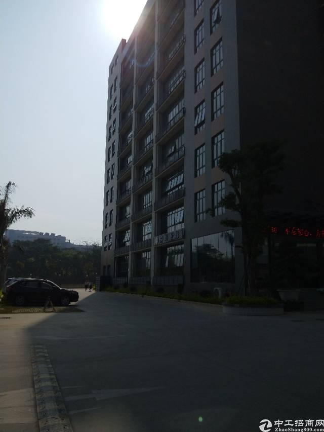 松岗107国道边带红本研发贸易中心招租-图5