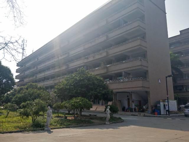 新塘花园式标准厂房 带豪华装修  可分租-图7