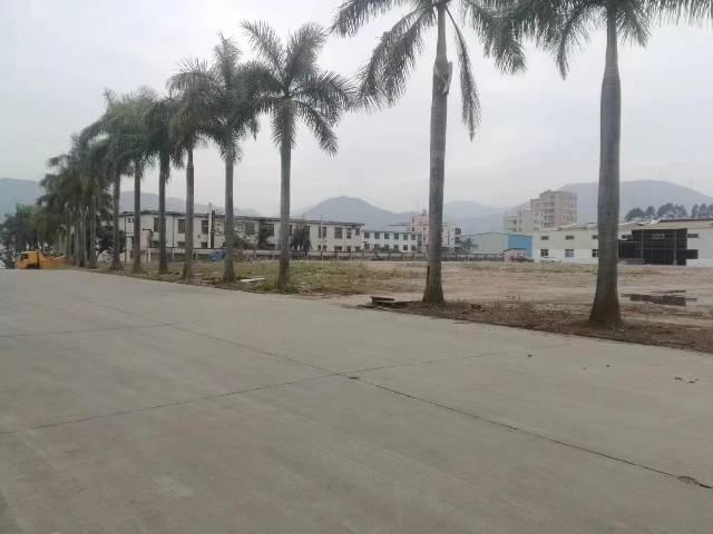 惠东白花工业区 厂房定建 可建滴水8.5米钢构4万平米