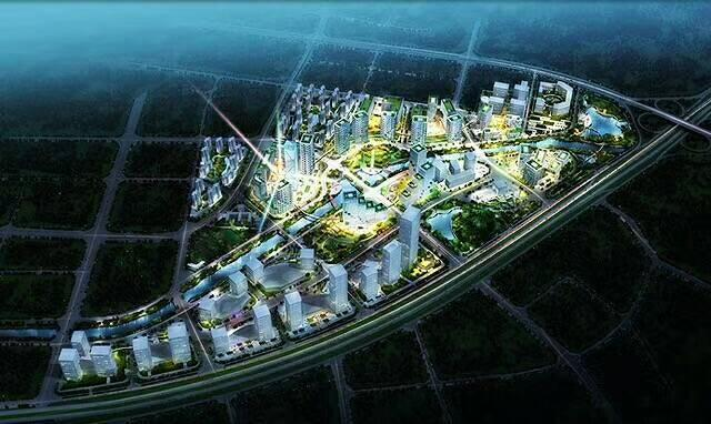 广东省茂名市国有挂牌土地50-100亩出售