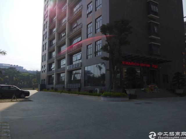 松岗107国道边带红本研发贸易中心招租-图3