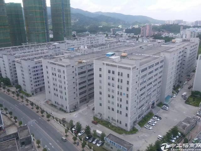 南光高速出口7万平米厂房出租-图3