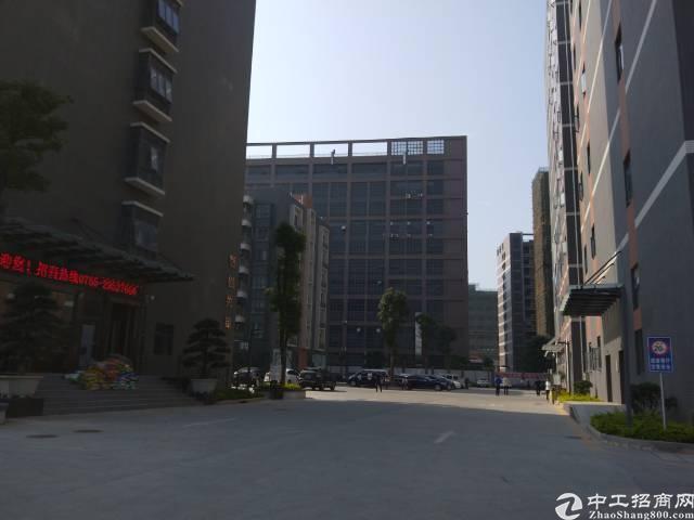 松岗107国道边带红本研发贸易中心招租