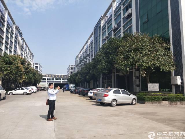 新塘花园式标准厂房 带豪华装修  可分租