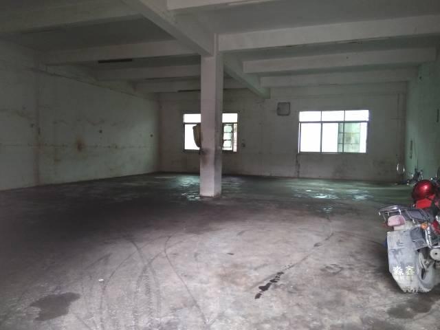 惠州新出精装独院标准厂房一栋1000平方,现房-图3
