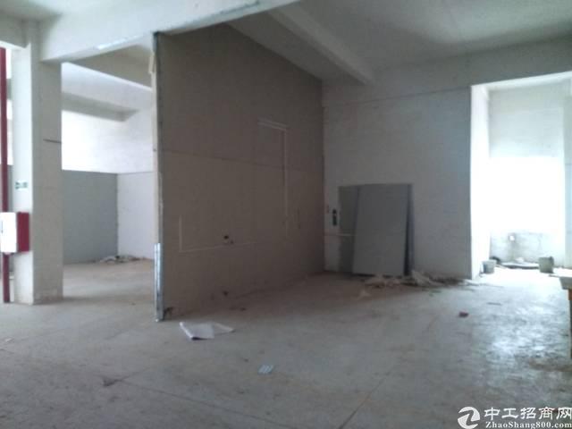 惠州新出精装标准厂房730平米,现房-图4