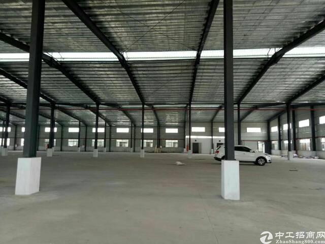 新出原房东单一层钢结构2800平