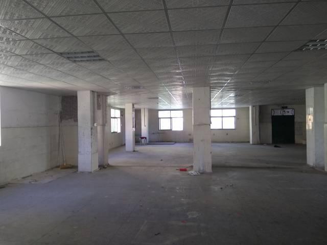 惠州新出精装标准厂房一楼800平米,现房-图3