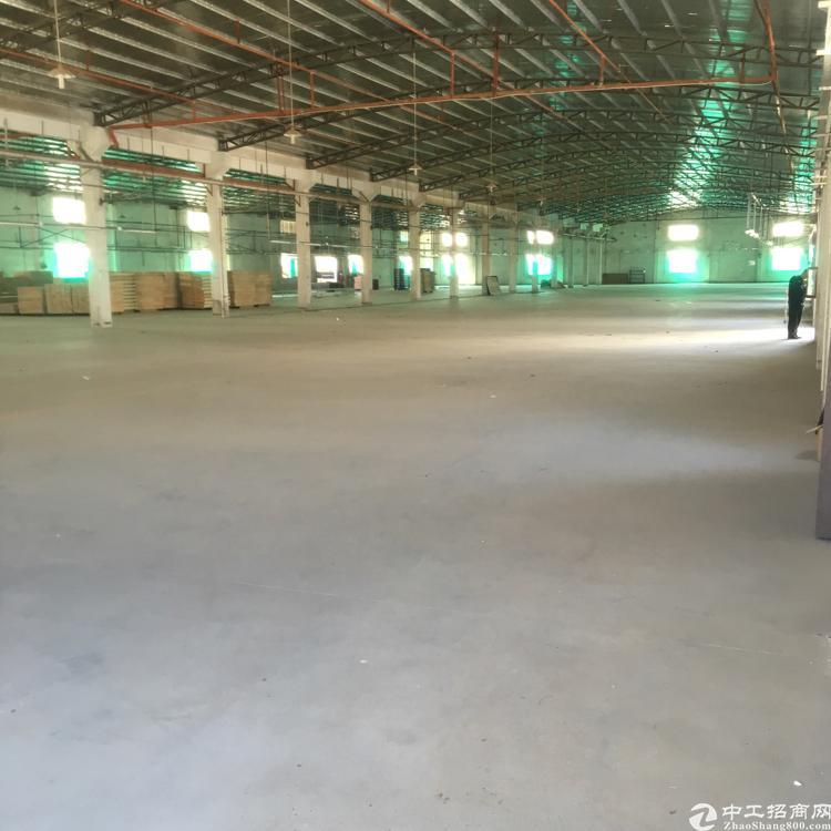 惠阳沙田新出钢构一楼两栋11500平米