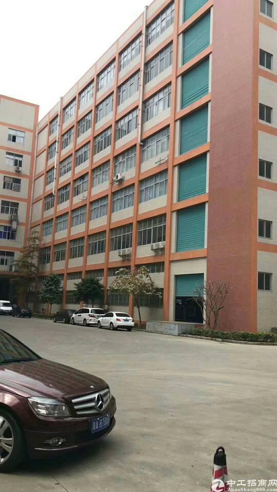 西乡固戍地铁站附近新出1300平方带装修厂房出租-图2