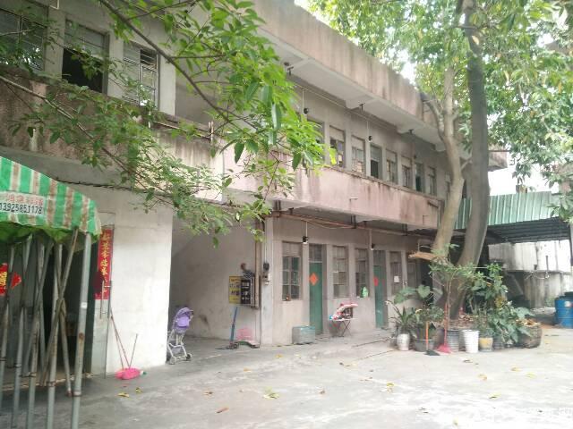 寮步镇现有两层小独院出租