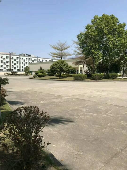 清溪三中靠近凤岗新出单一层厂房40000平,大小可分租