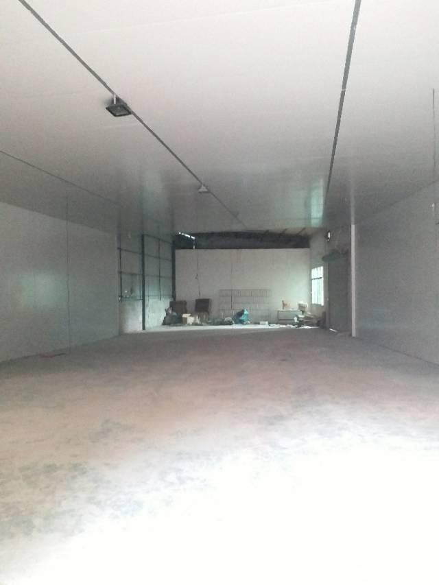 急租,常平新出单一层仓库钢结构,500平,免收中介费
