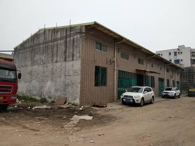 横沥镇原房东六米高厂房