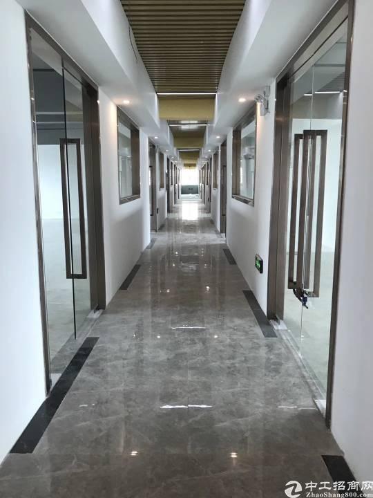 龙华清湖地铁站信威大厦五万平方招租