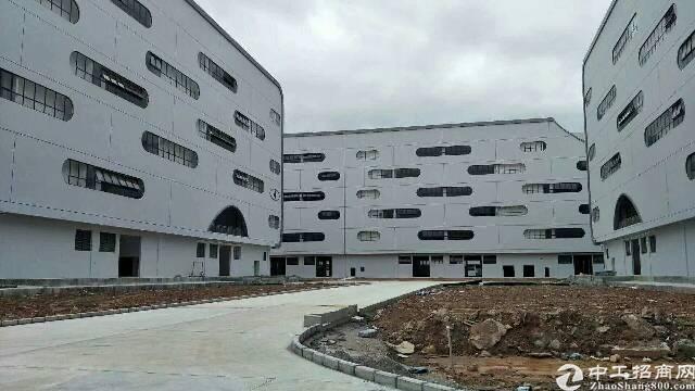坪山保税区290000平方厂房,大小分租