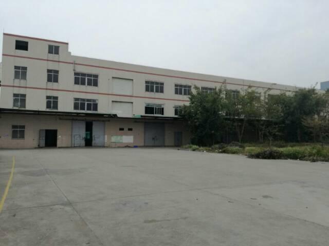 大朗新出经典独院厂房分租一楼2500平方,带5吨行车