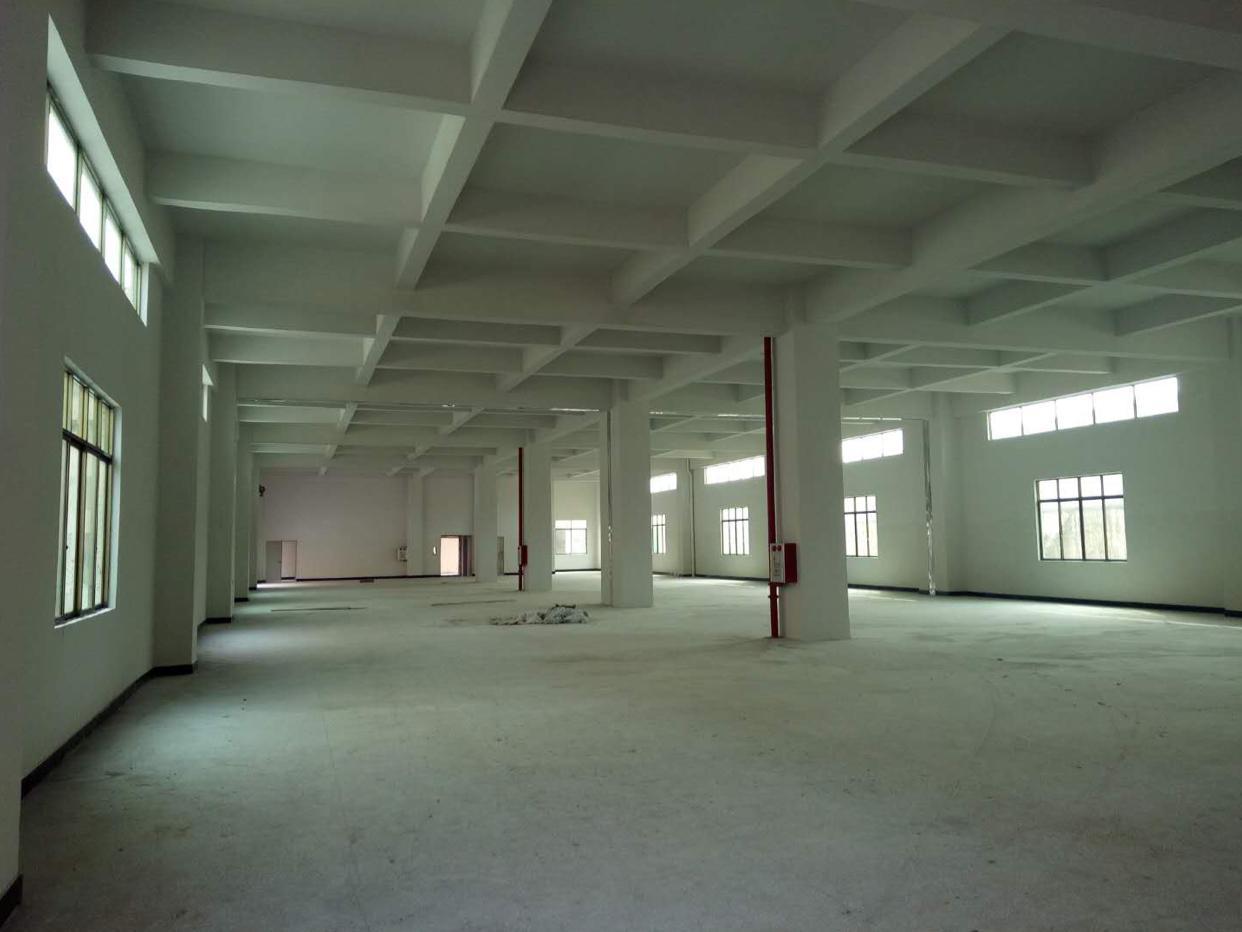 企石镇新出标准厂房一楼,全新厂房,层高6.5