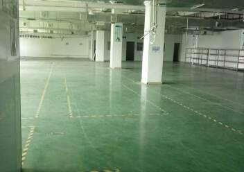 观澜大型工业园区原房东标准厂房三楼一整层出租1400平米。图片6