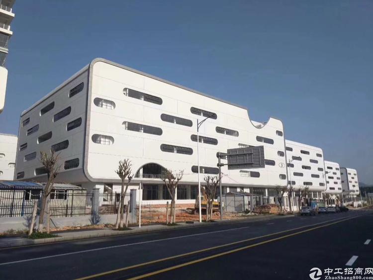 出口保税区厂房50000平米可分租