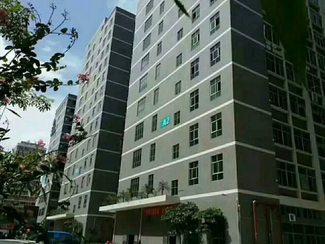 石岩高新科技园综合办公楼三楼350平招租