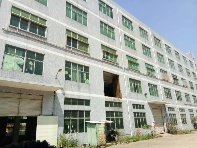 龙岗坪地北通道边一楼原房东厂房1100平米出租