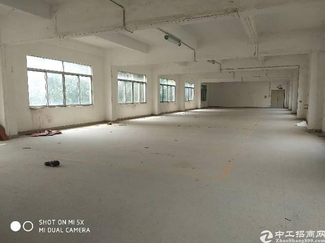 坪山坑梓新出标准二楼1200平带电梯空地大